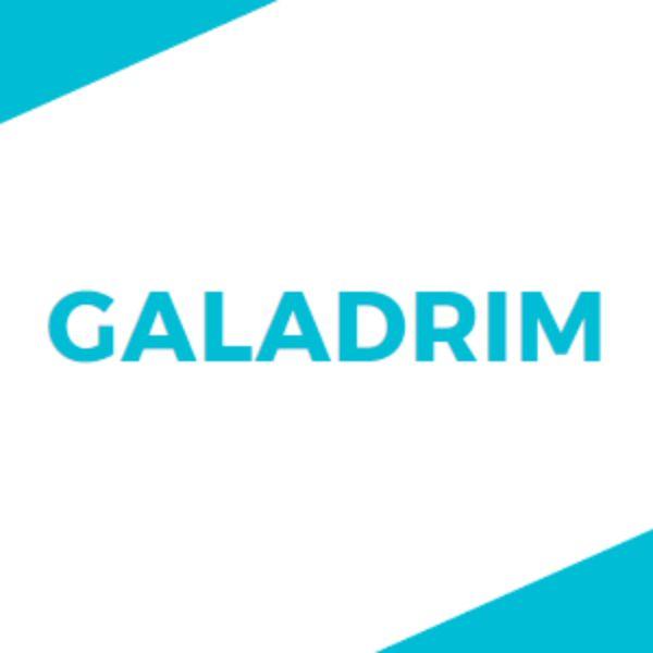 Logo de Galadrim agence développement à Paris